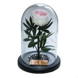 40.580 Цветы в стекле ~ вакуум*~